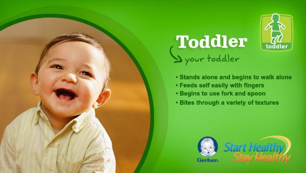 gerber toddler