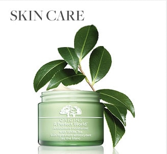 Origins Skin Care