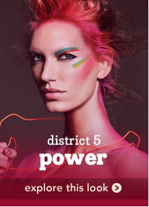 district 5 power