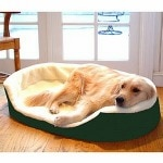 Majestic Pet Products Lounger Pet Bed, Extra Large, 43x28 inch,