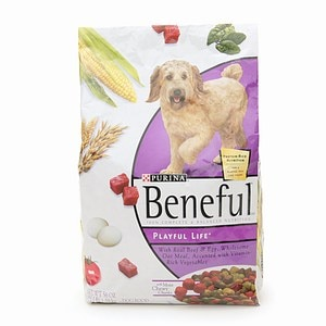 Beneful Playful Life Dry Dog Food- 56 oz