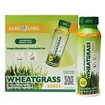 Agrolabs Wheat Grass Boost, 6 pk- 3 oz