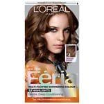 L'Oreal Paris Feria Permanent Haircolor, Bronzed Brown 51
